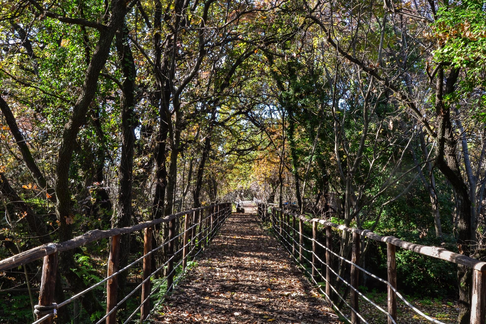 Parco Cosentini